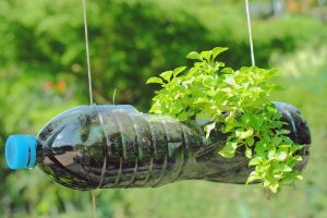 DIY Plantenbakken maken