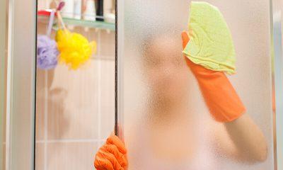 douchedeuren reinigen