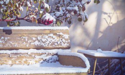 tuinmeubelen in de winter